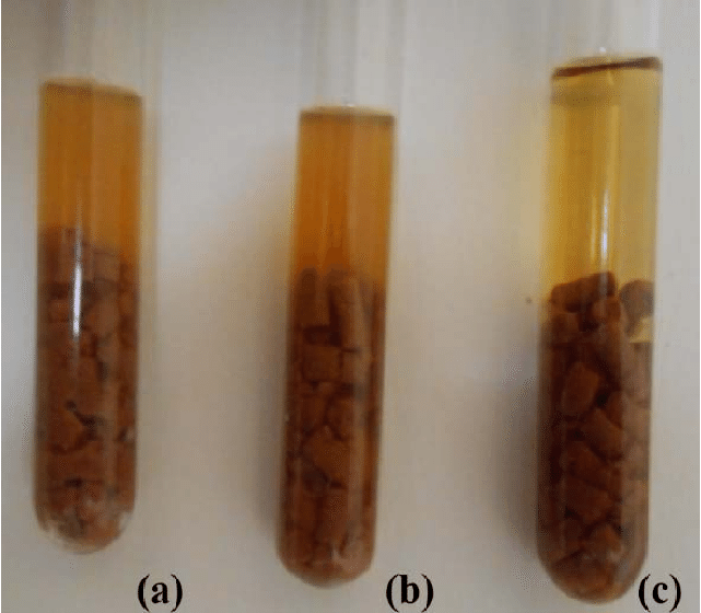 Cooked meat media with. Tubes a & b showing Clostridium perfringens 24 hours anaerobic bacterial growth after inoculation with samples while Tube C is uninoculated cooked meat broth