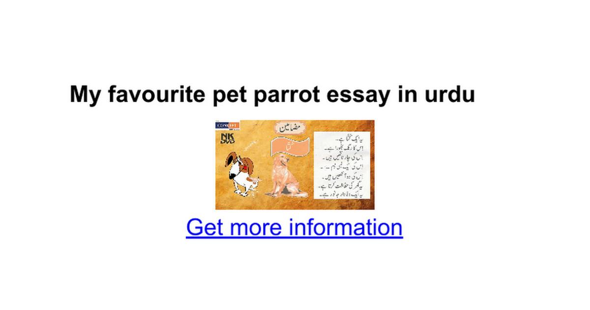 Pet animal parrot essay