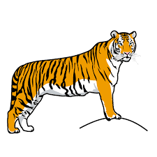 tiger world.png