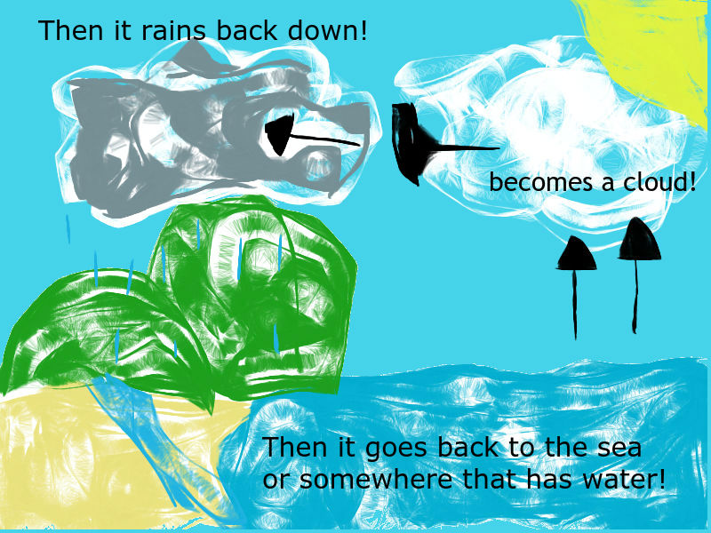 water cycle image .jpg