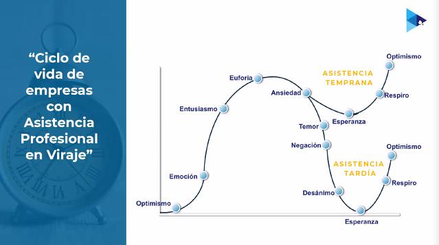Ciclo de vida de las empresas con Asistencia Profesional en Viraje