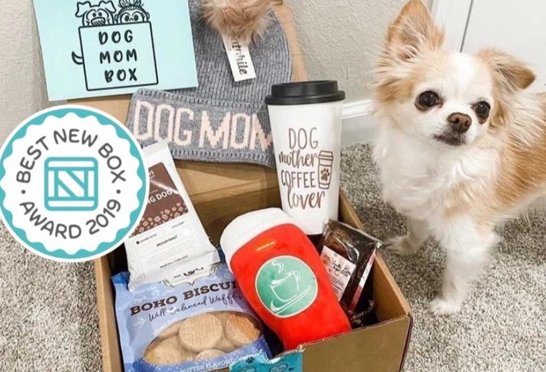 unique subscription boxes for dogs