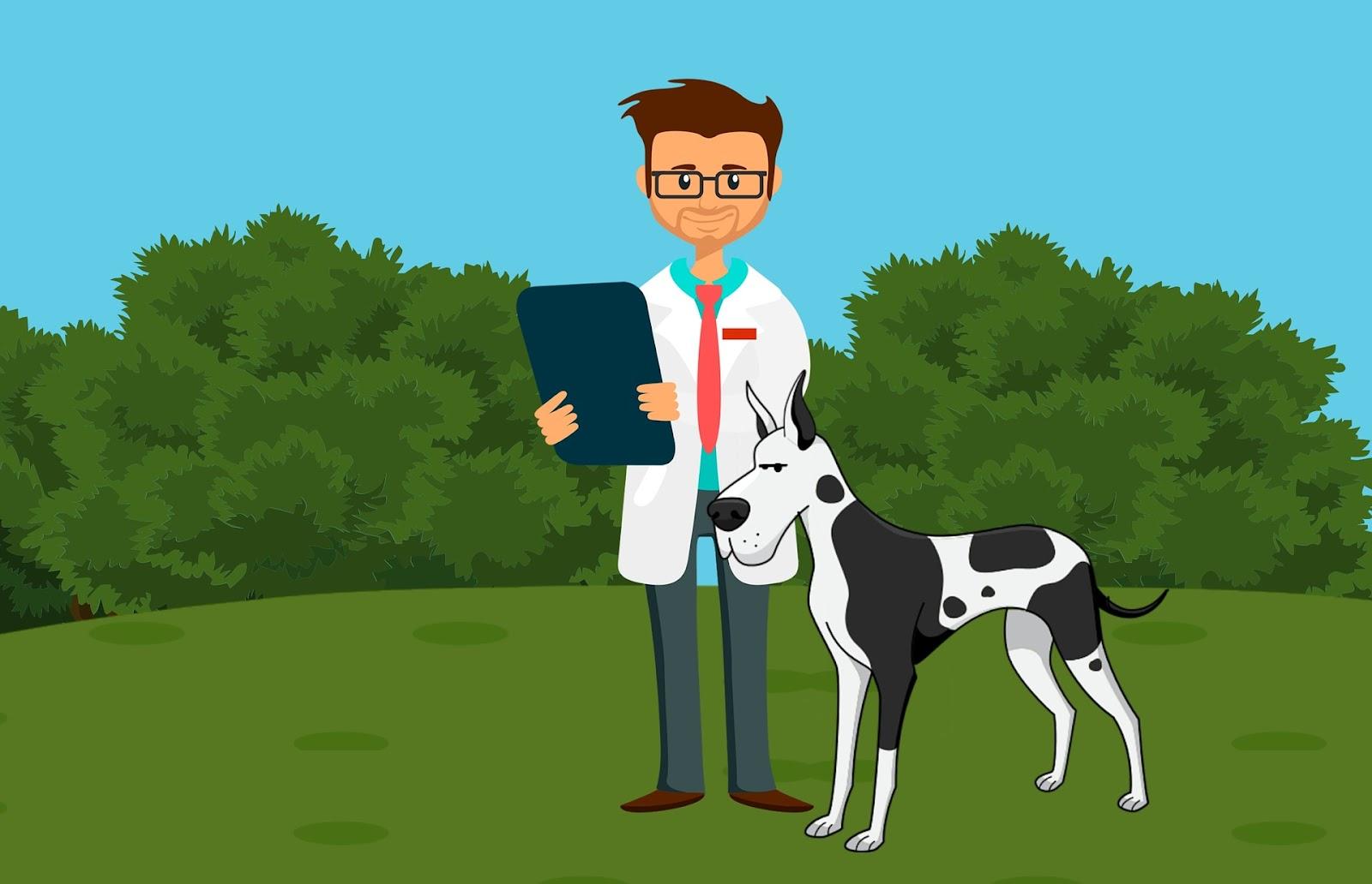 veterinarian and dog, happy