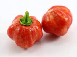Two small red peppers