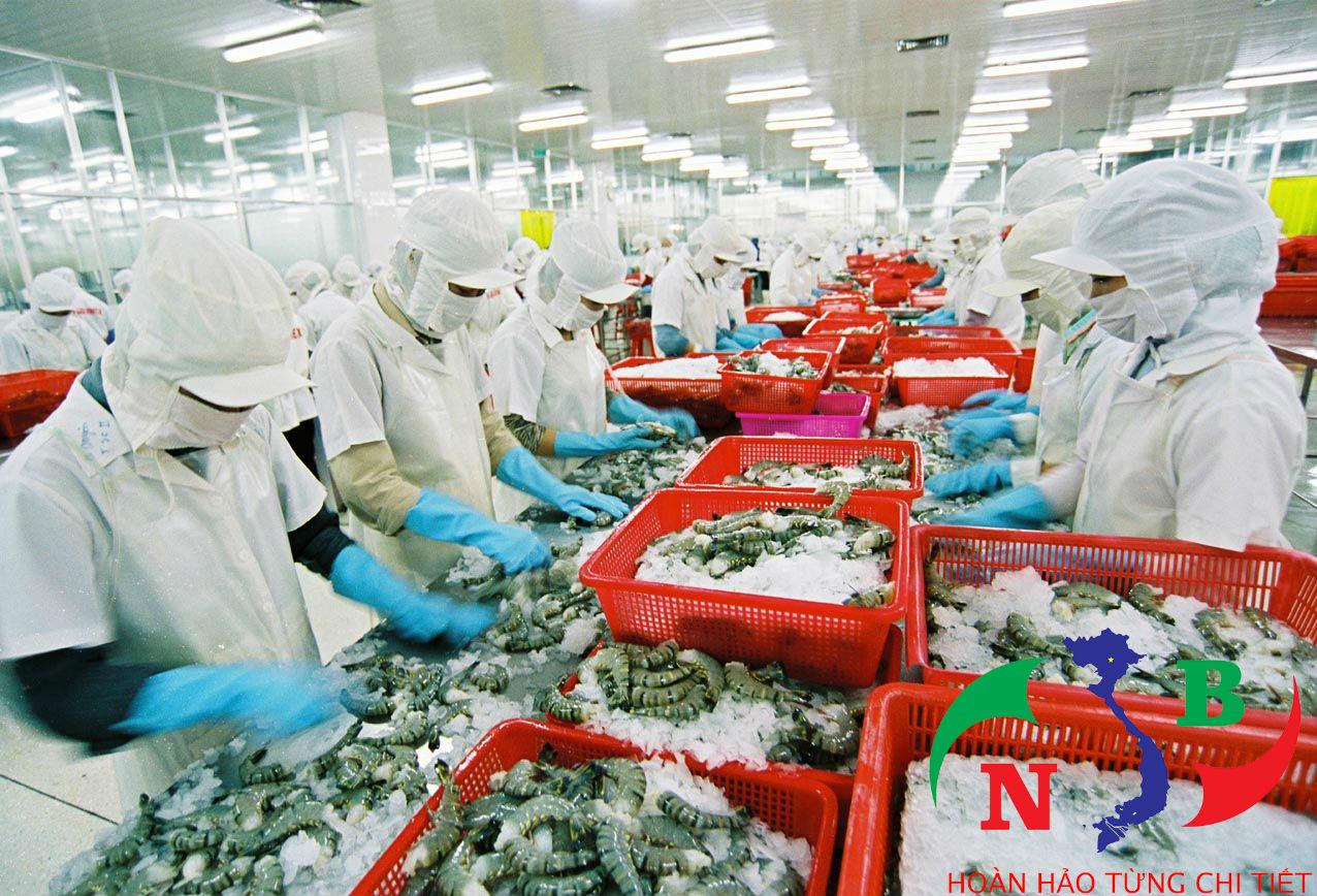 """Mở rộng thị trường quốc tế nhờ thủy sản """"sạch"""""""