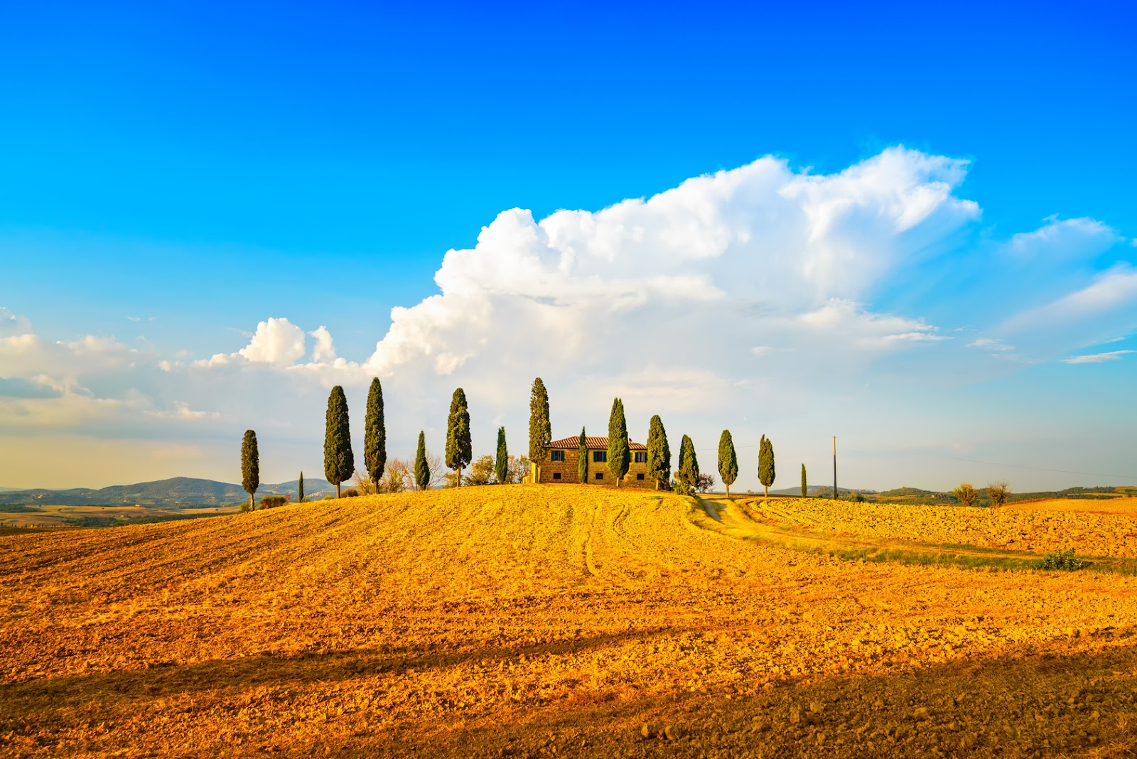 tuscany valle d'orcia.jpg