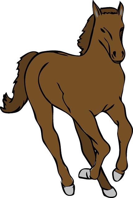 Kuda, Hewan, Binatang Menyusui