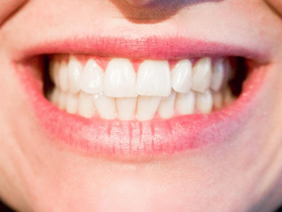 Teeth, Dentist, Dental, Mouth, Tooth, Oral, Dentistry