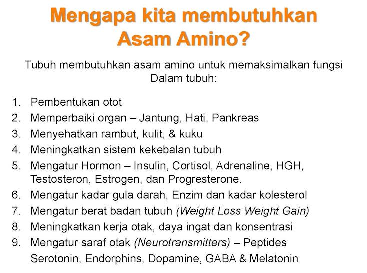 Nutrisi Herbal Untuk Menormalkan Gula Darah