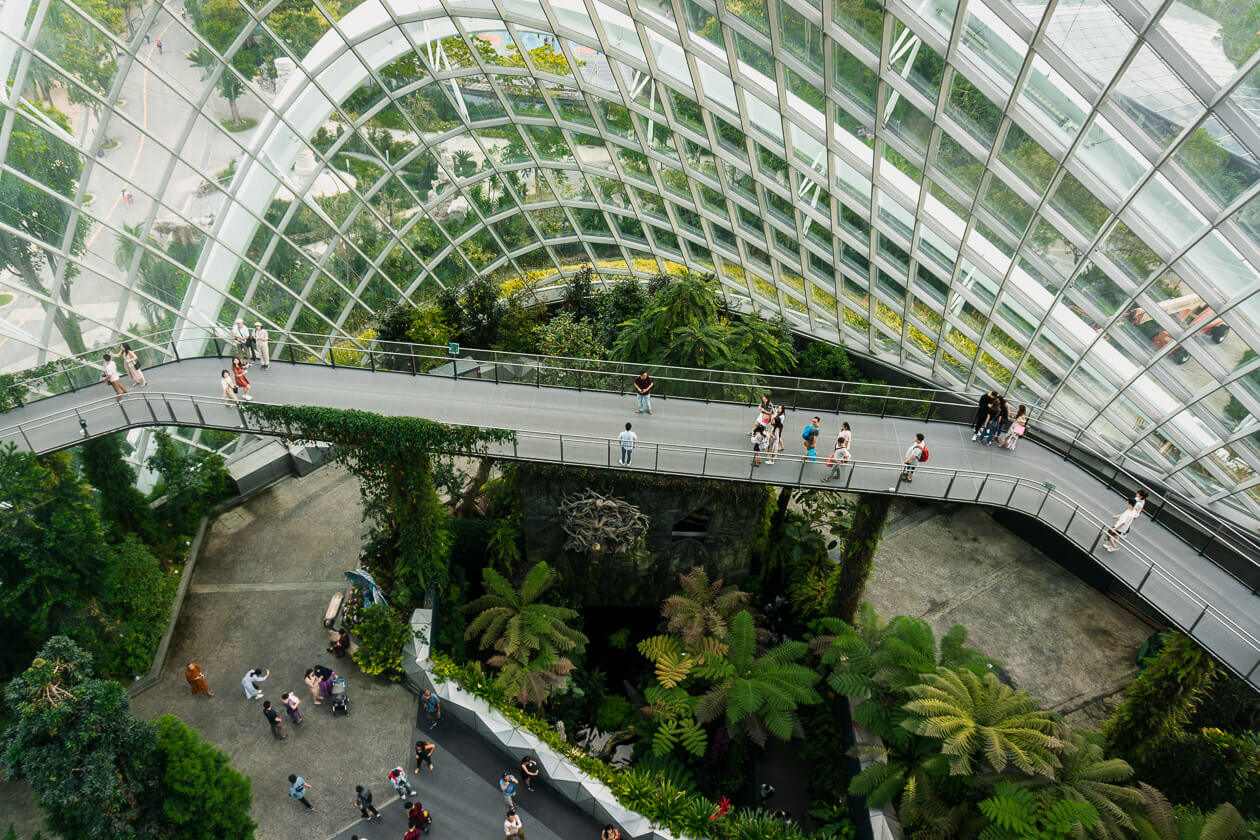 Birds eye view from inside the Cloud Forest at Gardens by the Bay Singapore.