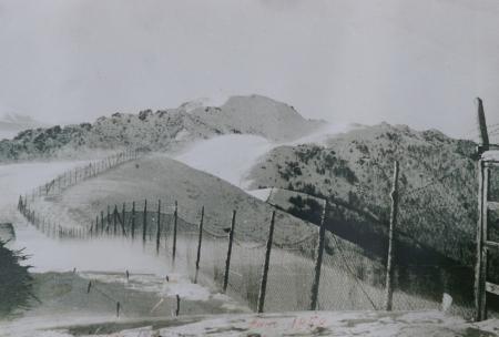 Rete metallica presso San Lucio (1958)