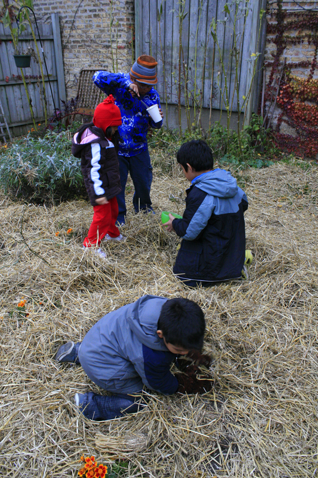 Young children playing in the straw in a neighborhood garden
