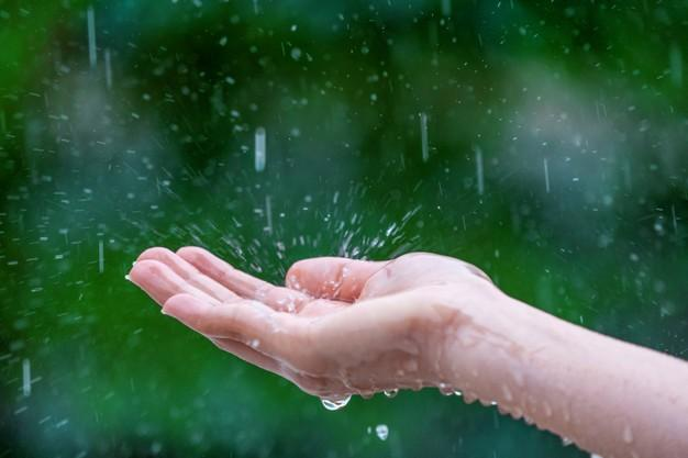 Close-up of wet female hands in rain Free Photo