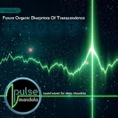 Future Organic Blueprints of Transcendence, Vol. 1