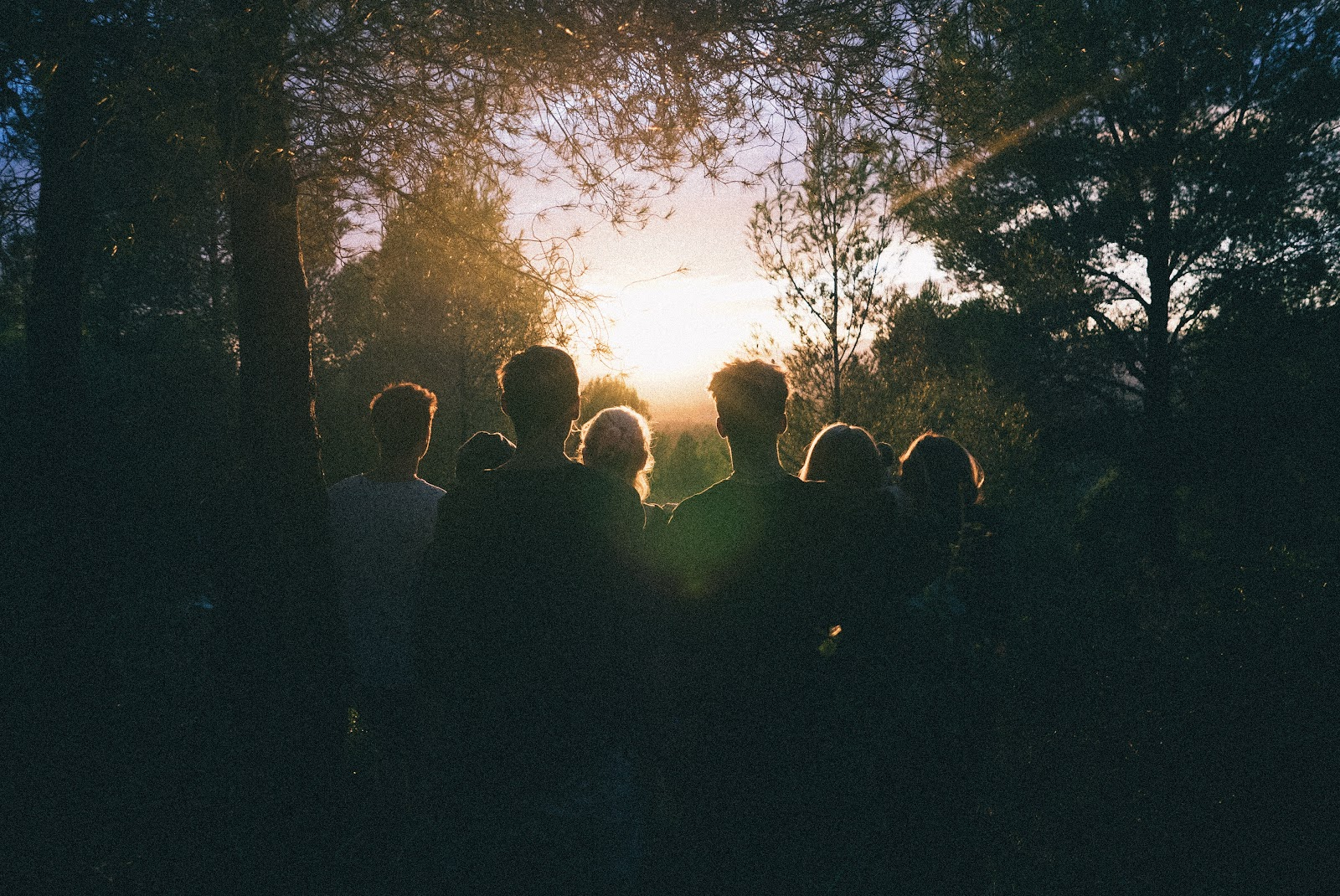 group of people staring into Sunset
