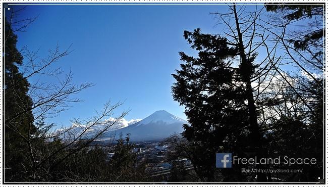 新倉山淺間公園8.JPG