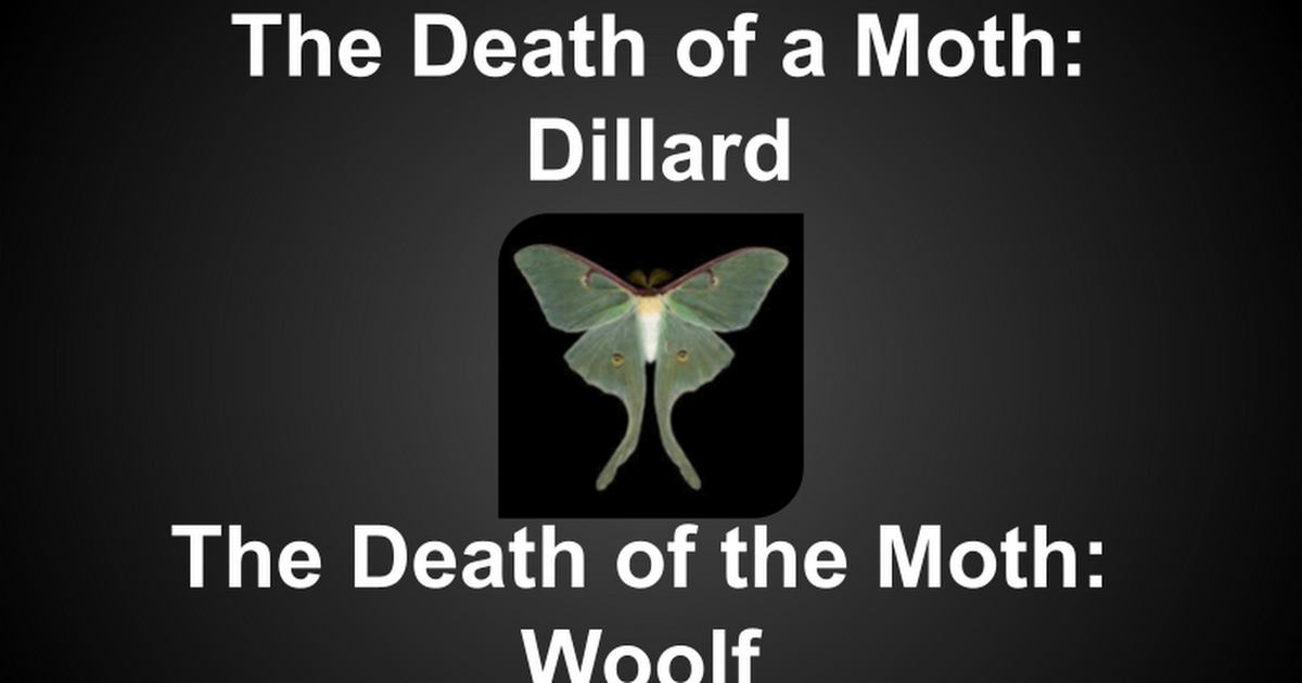 how is the third paragraph the center of the essay death of a moth virginia woolf