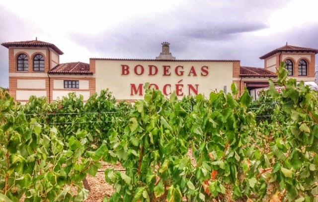 Bodegas Mocen vineyards