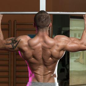 Massive Back (lasicacz) - Profile   Pinterest