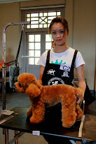 June and her winning Dog in the B category dog grooming competition in singapore
