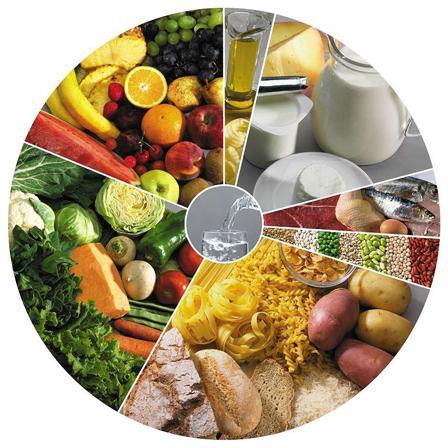 Resultado de imagen de food wheel