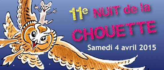 15048 082 17.02 ++ chiff-chaff, 11ème Nuit de la Chouette.jpg