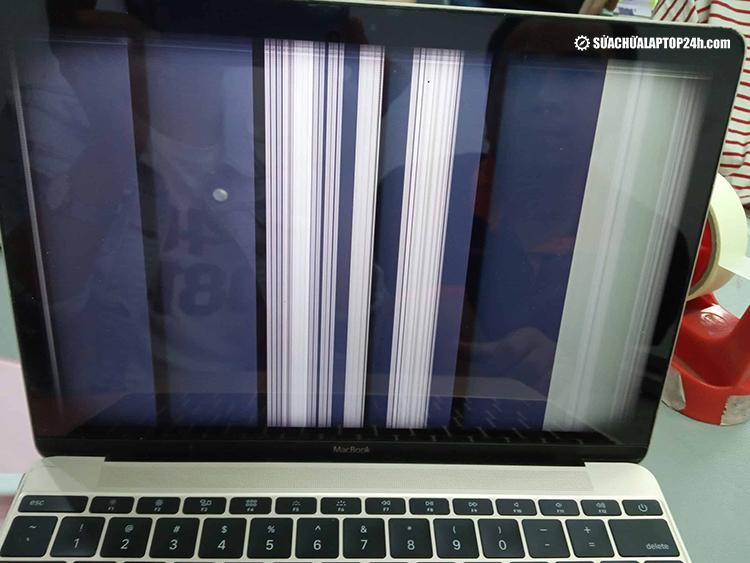 Cách sửa màn hình máy tính bị nhấp nháy