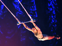 Atelier De Cirque Mad Artateliers