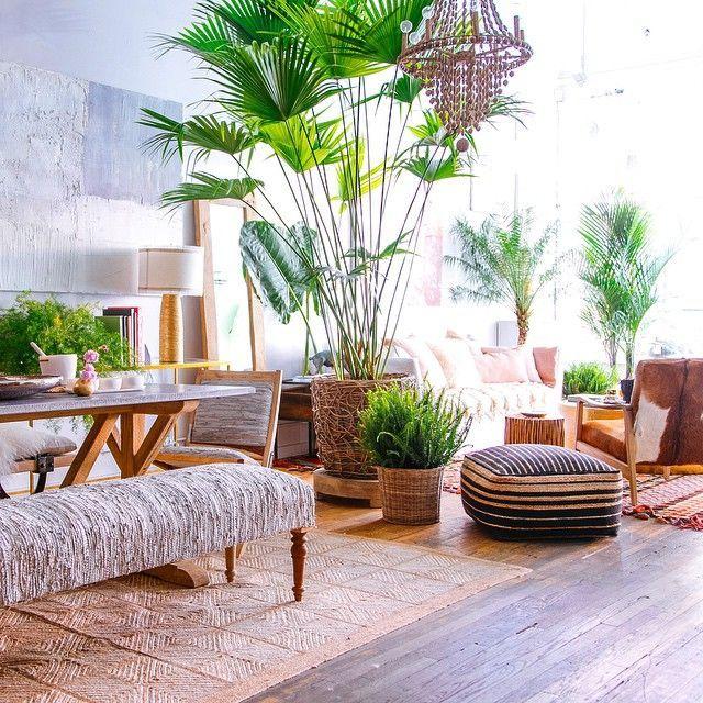 Penataan tanaman dan elemen dekorasi lain pada hunian bergaya tropical - source: pinterest.com