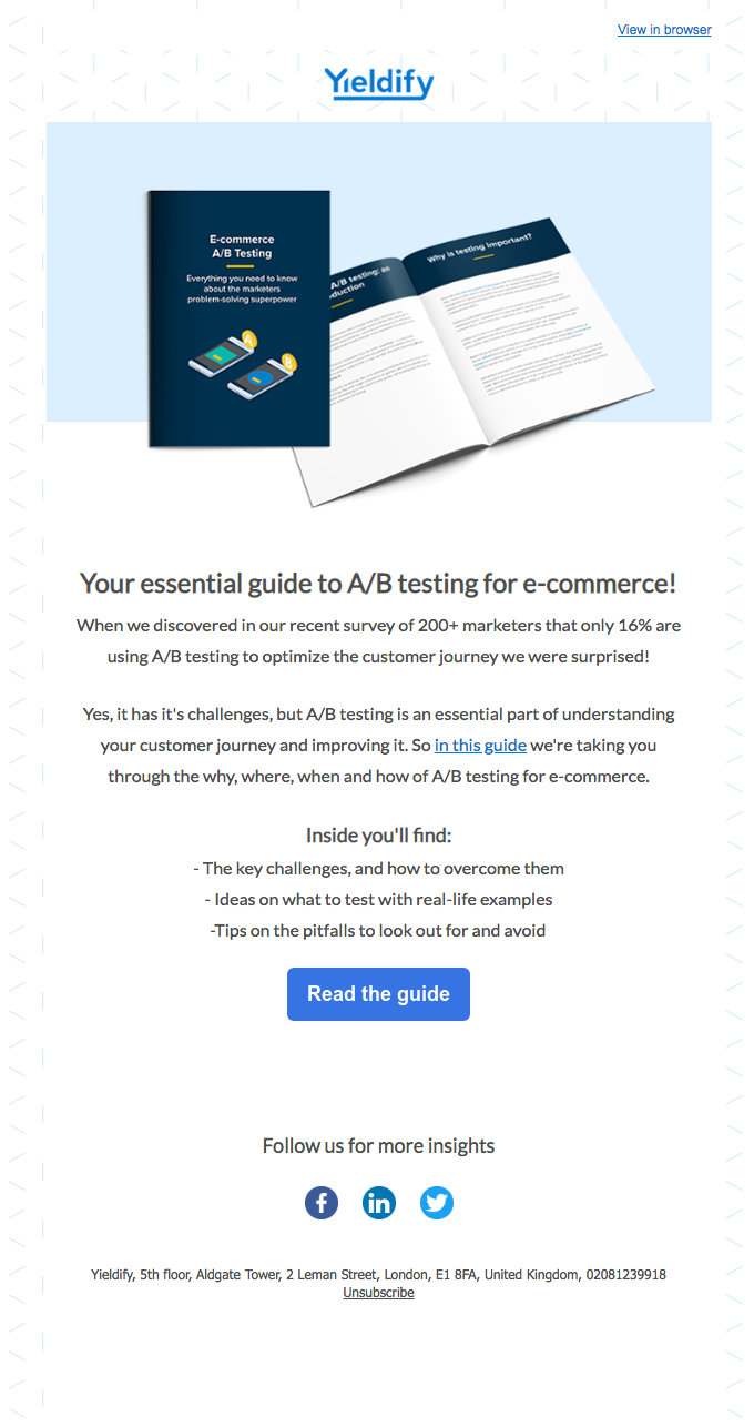 Email Blasts Tips - Segment Your Audience - Example From Yieldify