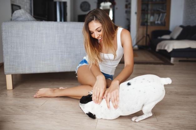 Jugar con tu perro es un consejo para cuidar a tu mascota