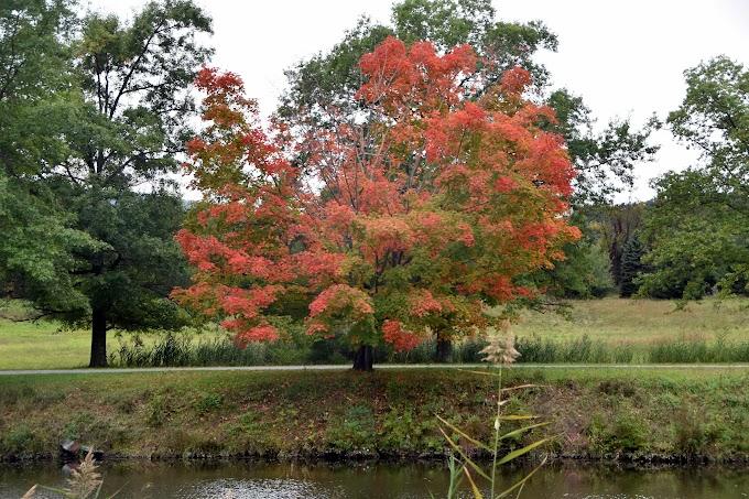 Happy Autumnal Equinox from EduSciTech
