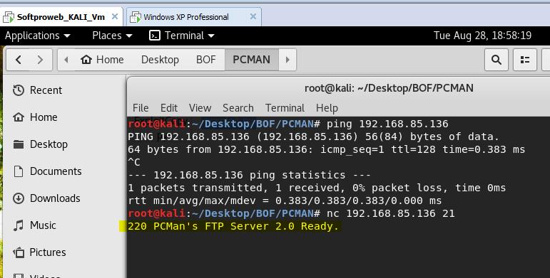 PCMan FTP Server Remote Buffer Overflow