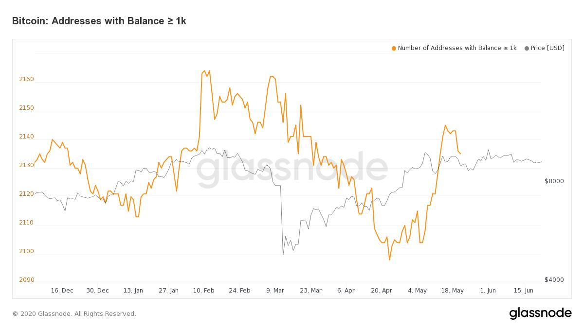 Gráfica de la cantidad de direcciones con un balance superior a 1000 BTC, o de ballenas Bitcoin. Fuente: Glassnode