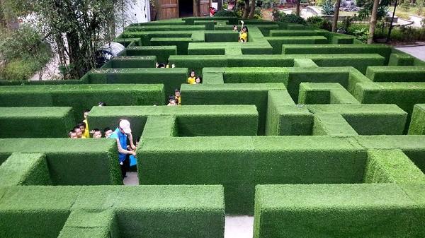 Mê cung cỏ đầy thử thách