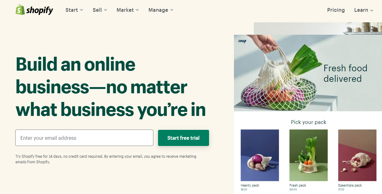 create a shopify store to make $1000 fast