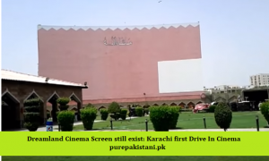 https://www.purepakistani.pk/wp-content/uploads/2018/12/Drive-In-cinema-300x180.png