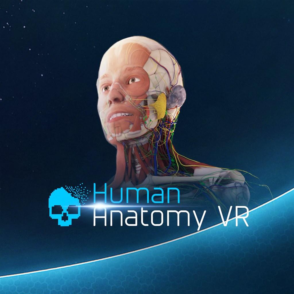 Human Anatomy VR