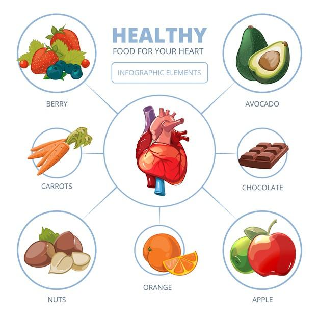 Heart care vector infographic. healthy foods. diet and care, apple vitamin illustration Free Vector