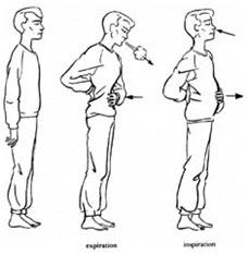 respiration-abdominale.jpg