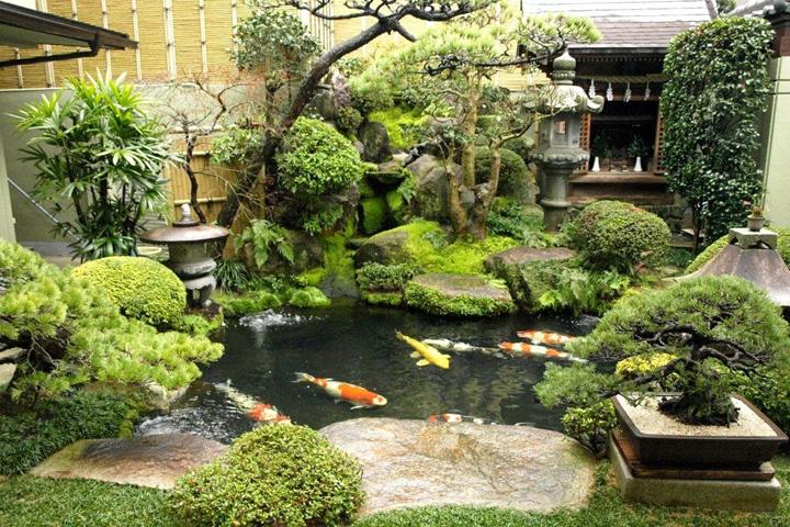 Tiểu cảnh dạng nước tạo điểm nhấn cho sân vườn