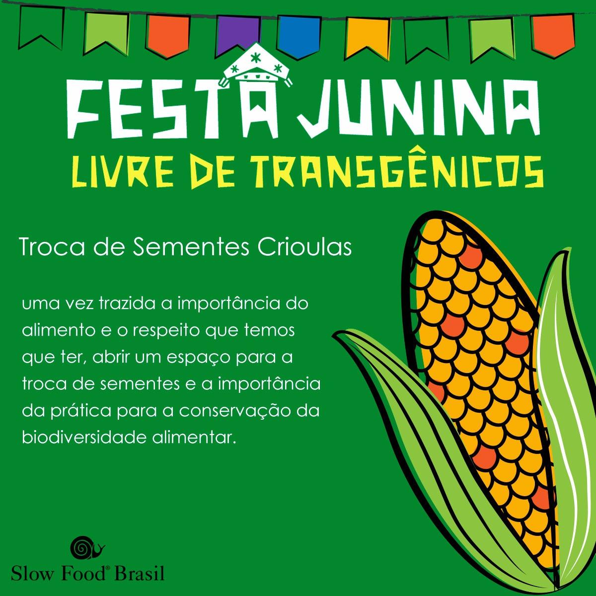 4 - troca de sementes crioulas.jpeg