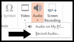 Record Audio.jpg