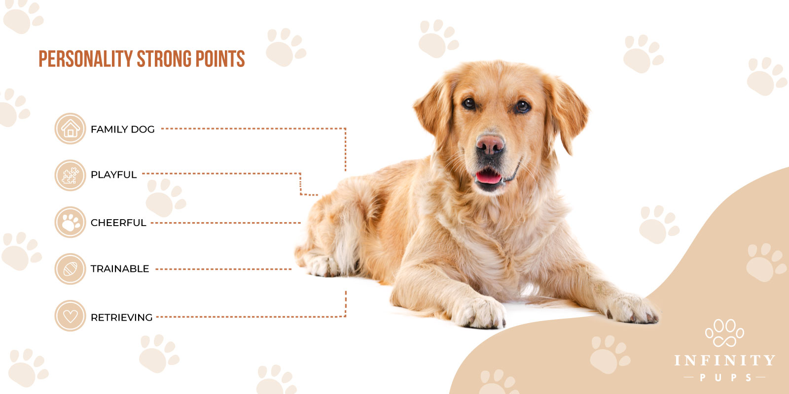golden retriever personality strong points