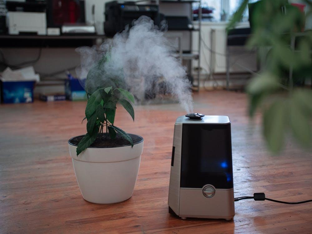 Turned-on Air Purifier on the Floor Near Plant