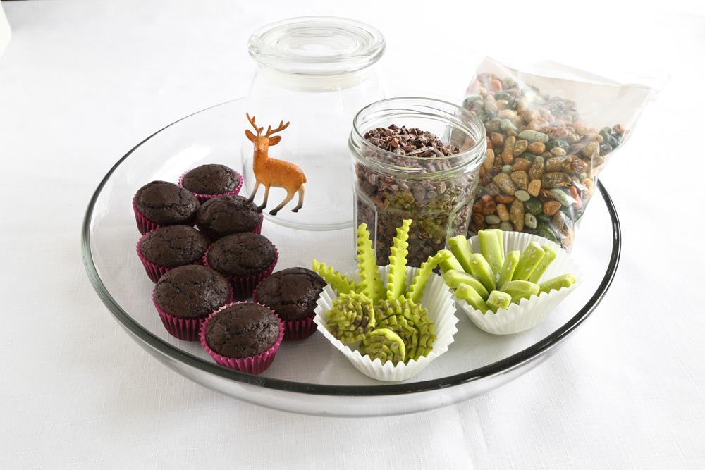 Photo of edible terrarium supplies