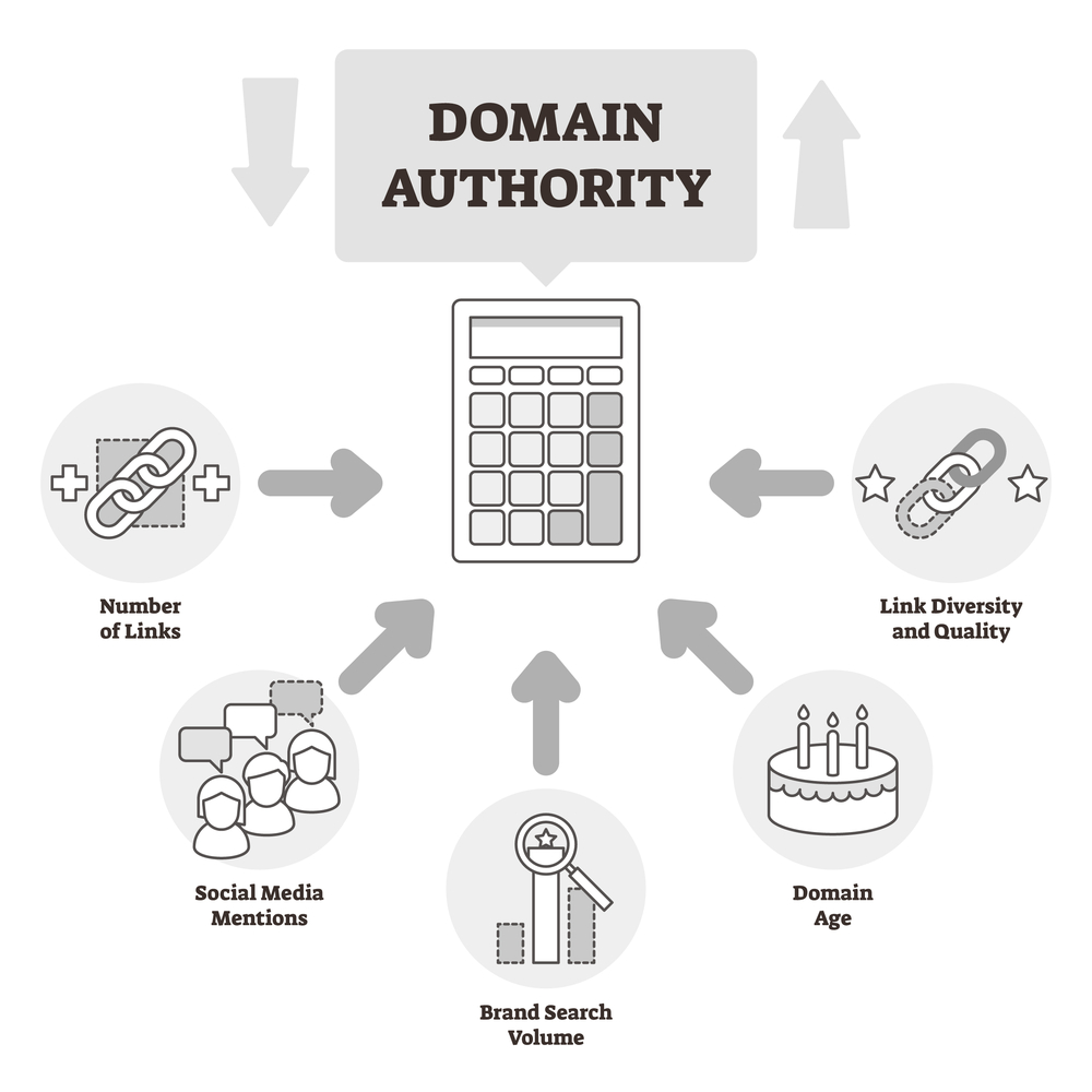 components of domain authority graphic