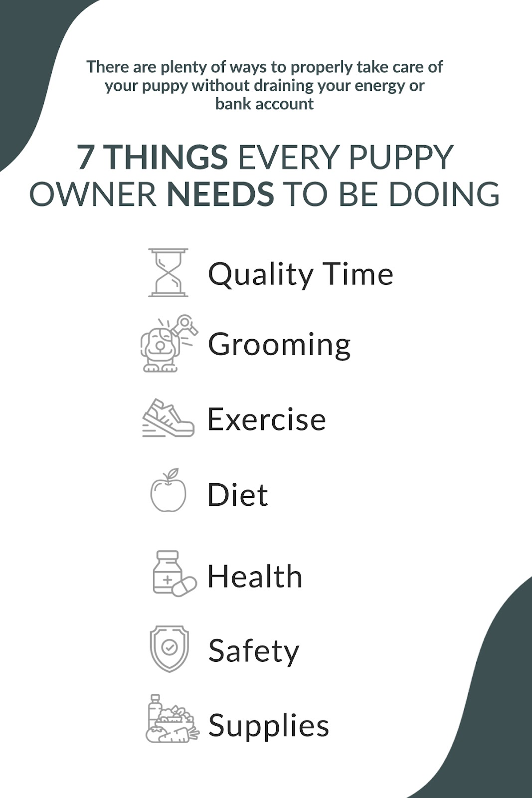 how to properly care for your puppy on a budget