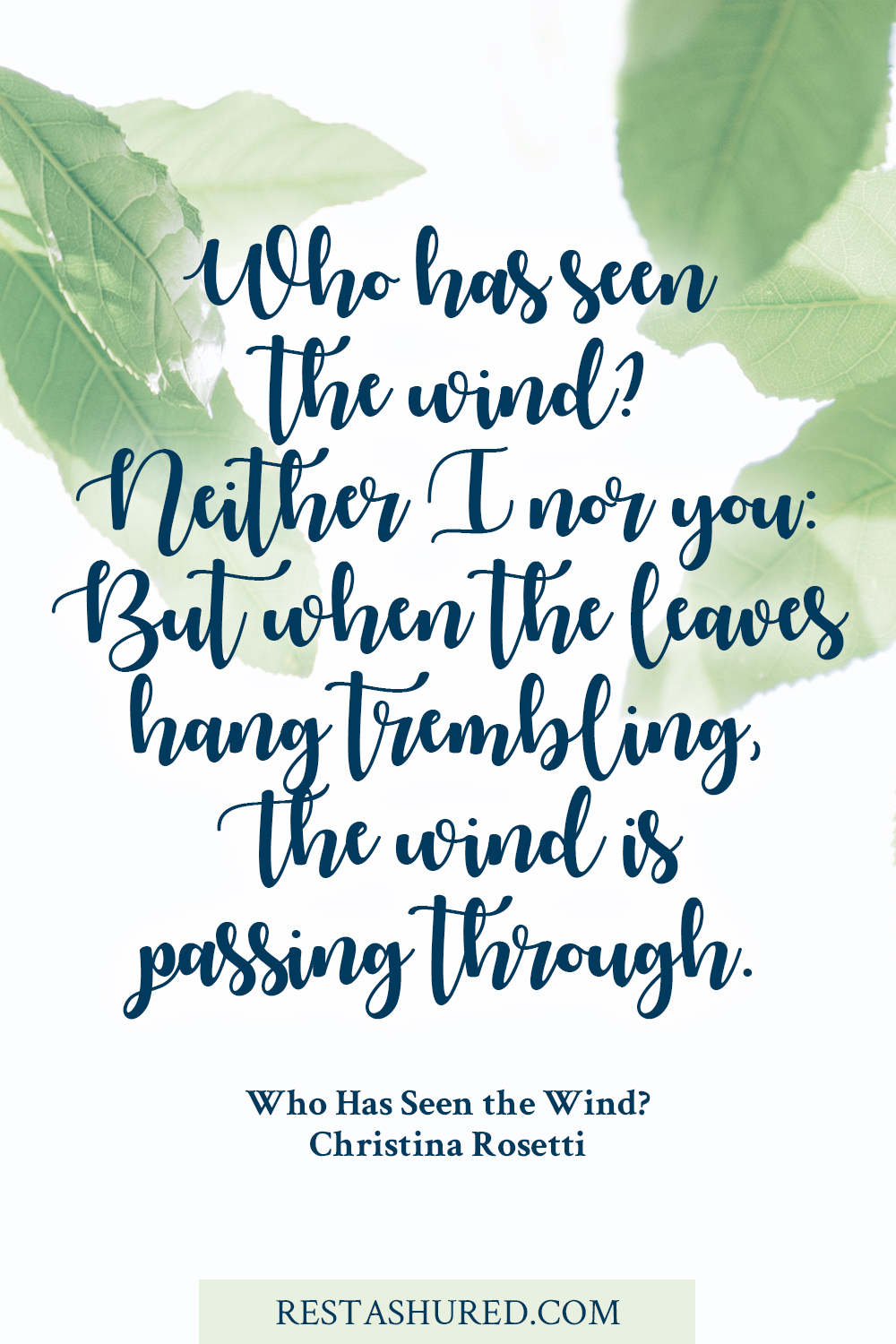 Photo of Quote reading who has seen the wind?
