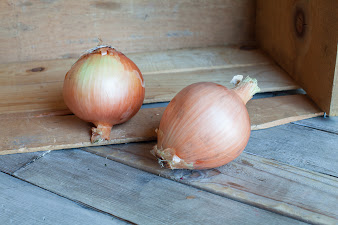 Photo of the share - Yellow Onions
